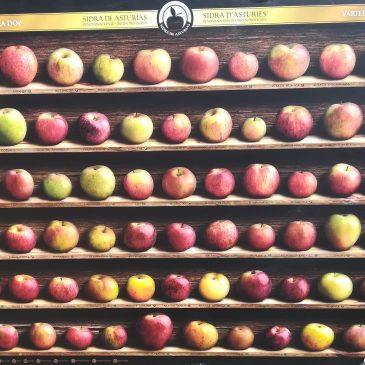 Tipos de manzana para la sidra natural